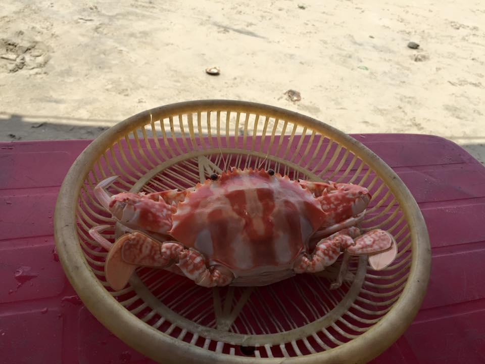 Hải sản Long Hải