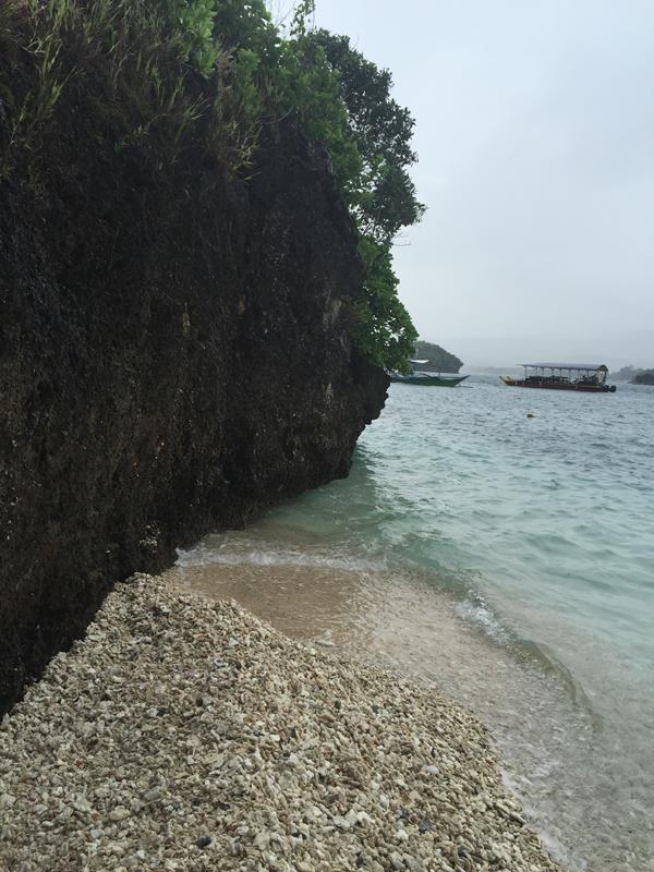Bờ biển san hô ở Crystal Cove