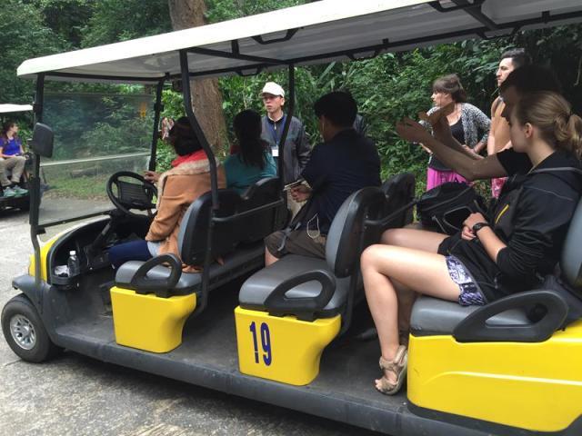 Xe điện chở vào Động Thiên Đường