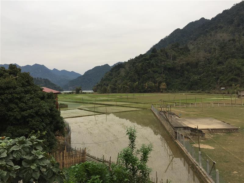 Huỳnh Hà Homestay