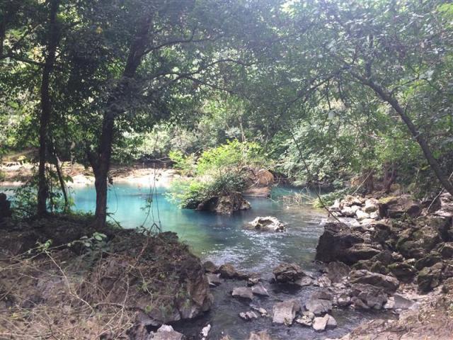 Đầu nguồn suối Lê-nin
