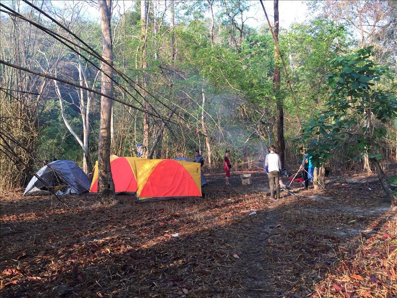 Hạ trại trong rừng