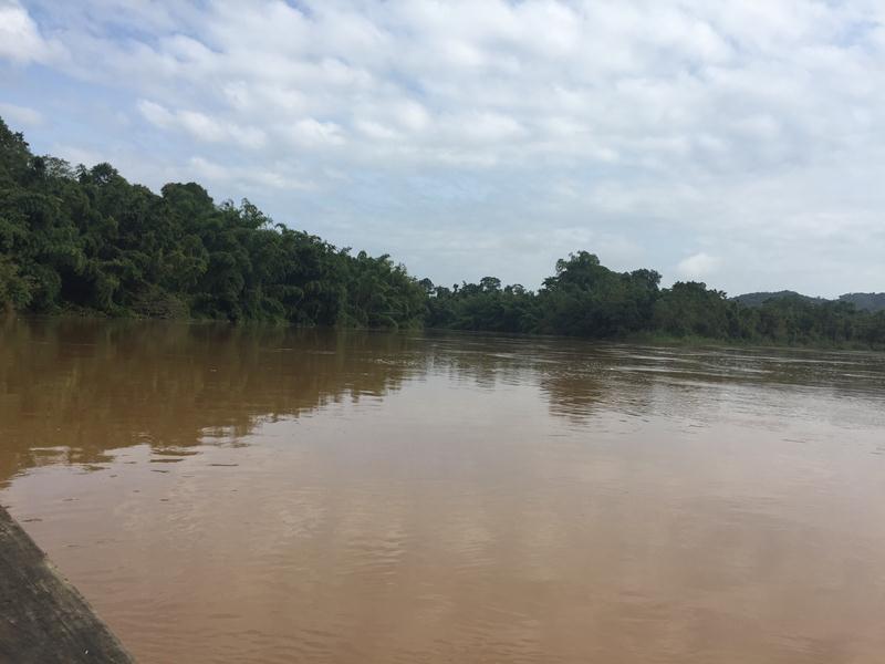Sông Đồng Nai