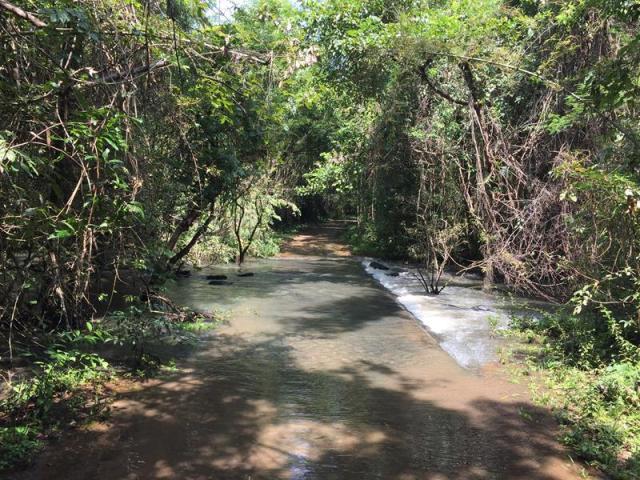 Nước sông dâng cao