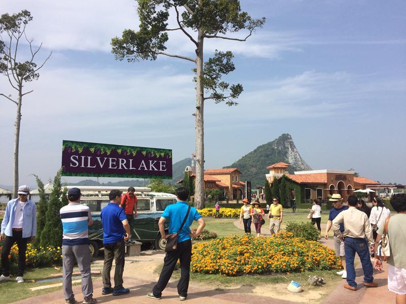 Silverlake Grapes Farm