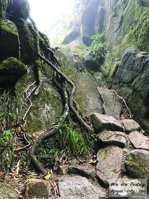 Đường đi - Trekking Fansipan